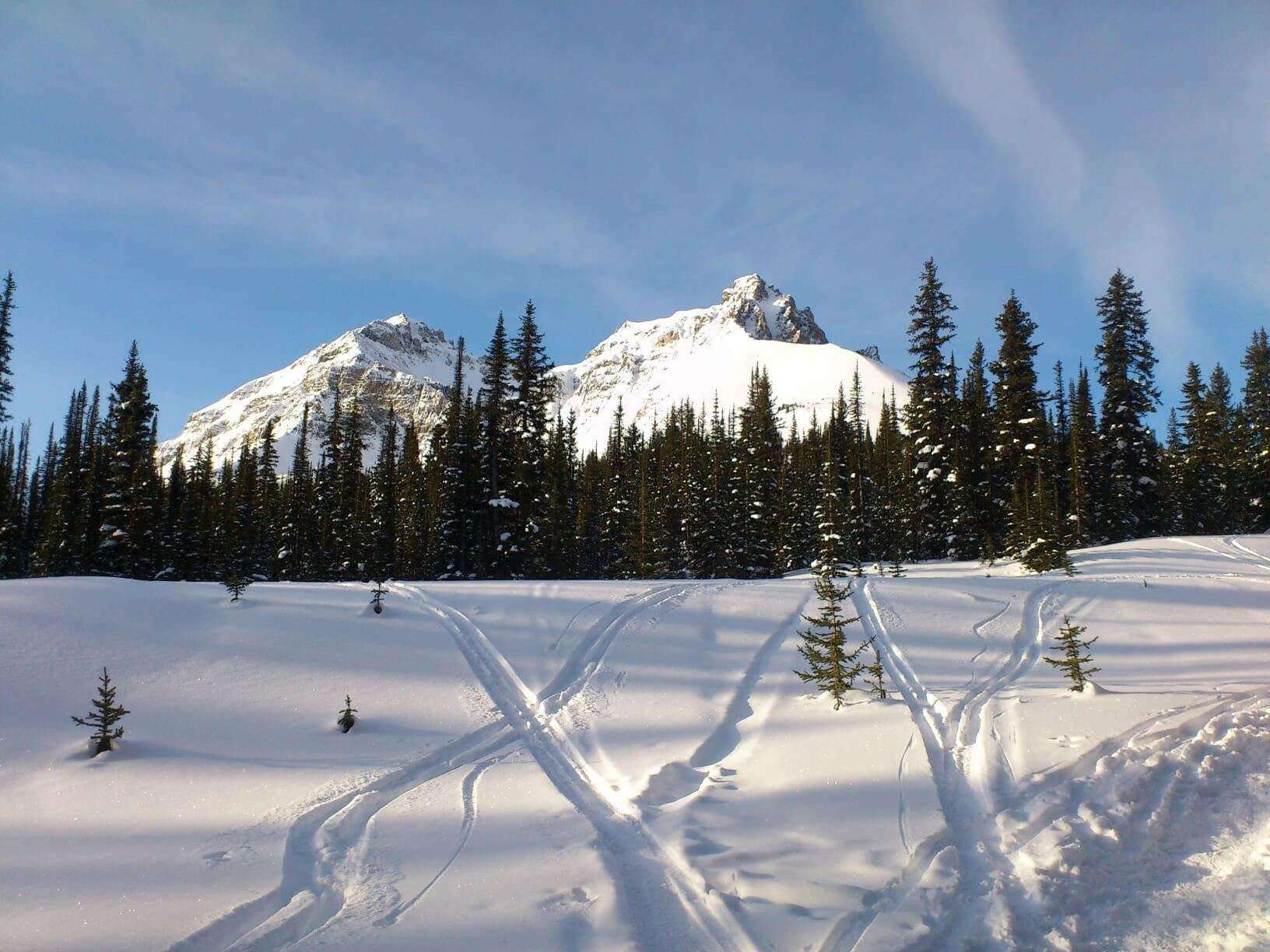 back country skiing nordegg alberta